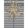 Independence - Sparkler