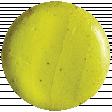 Pond Life - Yellow Button
