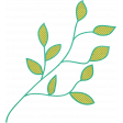 Garden Party - Branch Doodle