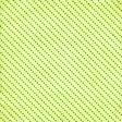 School Paper Dots Diagonal 002 - 06