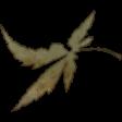 Crisp Fall Air Leaf 01