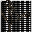 Crisp Fall Air Tree