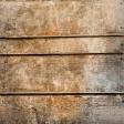 Spook Paper Wood