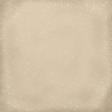 Snow Day Swirls Tan Paper
