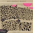 Bird Graphics Bundle