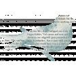 Wren Kit: Bird