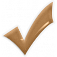 Aneira Kit: Epoxy Checkmark