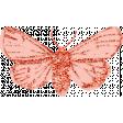 Rebecca Kit: Moth