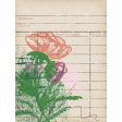 Rebecca Kit: Library Card