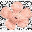 Josie: Flower 02