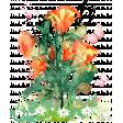 Pink & Orange Watercolor Botanical Transfer