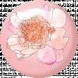 Pink & Orange Floral Flair 1
