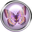 Purple and Orange Butterfly Brad