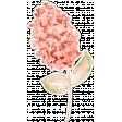 Watercolor Peach Flower Sticker