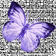 robinsampson_lilac_aqua_mini_element_butterfly_1
