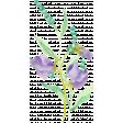 Lilac Aqua Element 30 Watercolor Flowers