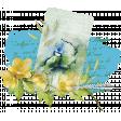 Ephemera Bird Watercolor Cluster