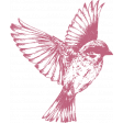 Pink Bird Etched Stamp
