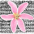 Pink Watercolor Flower Sticker