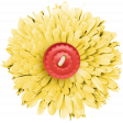 Bee-Attitudes Add-On Flower 2
