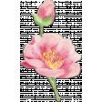 Pink Chipboard Flower