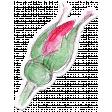 Bloom Pink Rose Bud Sticker