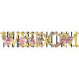 Discernment Kit Add On: Wisdom Word Art Floral Alpha