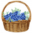 Sow & Reap Basket of Blueberries