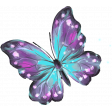 Hello Spring Butterfly 2