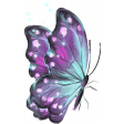 Hello Spring: Sparkly Butterfly 3