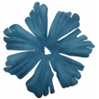 Colore Blu Blue Flower