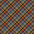 House Colors Plaid