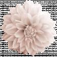 flower pink polka dots