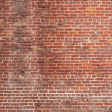 House Honors - Patterned - Brick Wall