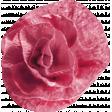 Birthday Bash Mini Kit - Element - Flower - Crepe Paper - Pink