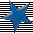 journal star1