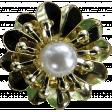 gold brooch1