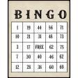hisstory_vintage bingo Card