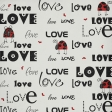 Ladybug Love Paper 01
