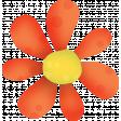 Orange Flower 03