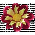 Bohemian Rhapsody Flower (4)