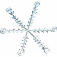 BICO snowflake (03)