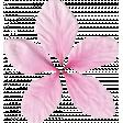 Pink Flower Petals (01)
