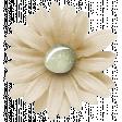 Bearly Spring Flower (05)