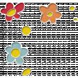 Pretty Bird Flowers (scatter)