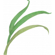 Barnyard Buddies Grass (03)
