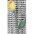 Bright & Cheerful Flower (08)