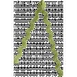 Green Ricrac 02