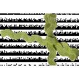 Green Ricrac 08
