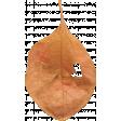 Pumpkin Patch Leaf 02